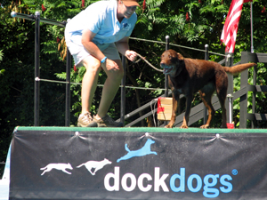 Dock Dogs: annual event whereby canines who are trained to leap off a ledge and go flying into a pool of water.